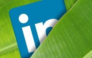 LinkedIn SEO: как сделать ваш бизнес-аккаунт более заметным