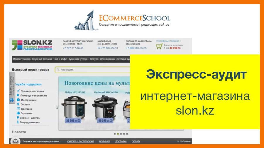 Экспресс-аудит интернет-магазина slon.kz