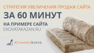 Стратегия увеличения продаж сайта за 60 минут на примере сайта ekovatakazan.ru