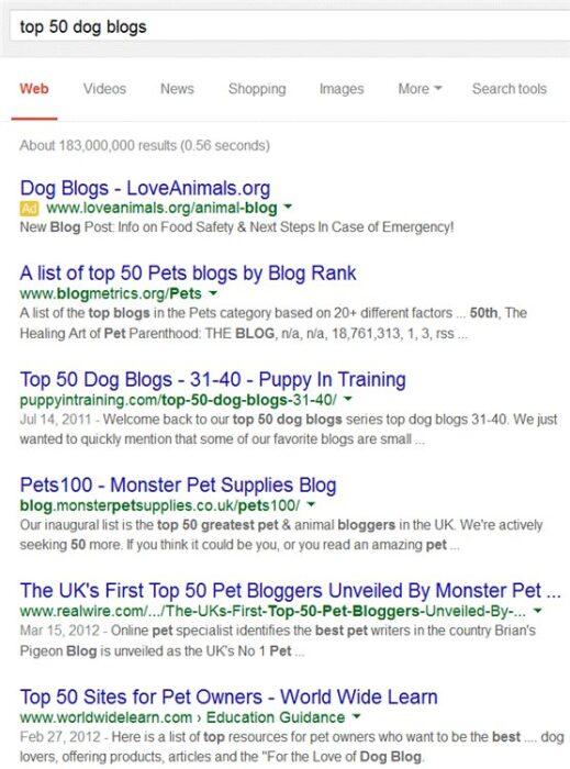 Еще он погуглил 50 лучших блогов о собаках и подобное