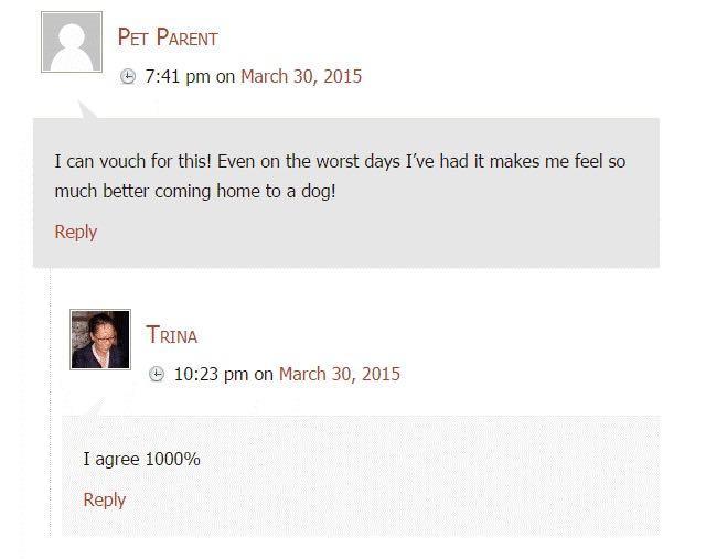 Вот примеры положительных комментариев, которые оставляли блогеры к постам с Гостеграфикой