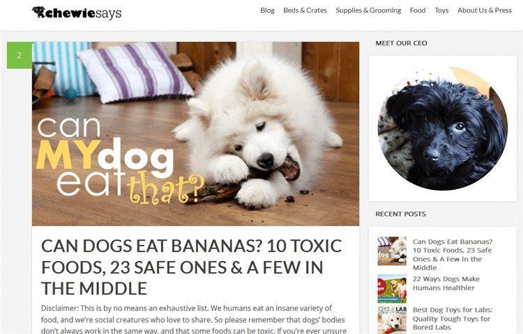 После десятков ночей, проведенных за написанием статей, появился сайт с названием Чюи говорит (ChewieSays)